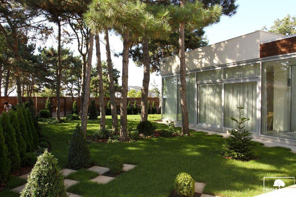 Ландшафтный дизайн загородного дома в сосновом бору